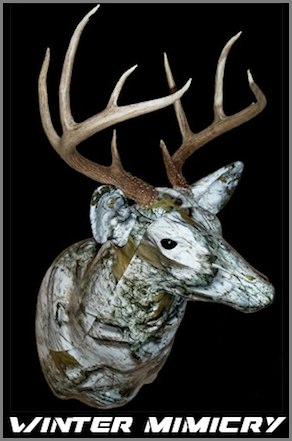 CamoBuck Winter Mimicry
